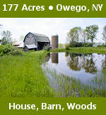 177 acres in Owego, NY for auction including farm house, barn, silo, two out-buildings, pond and woods.